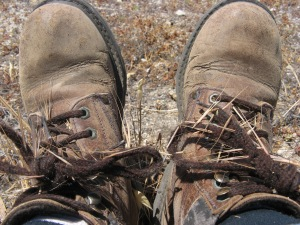 My first pair of hiking boots, looking a bit worse for wear after an encounter with grass seeds.