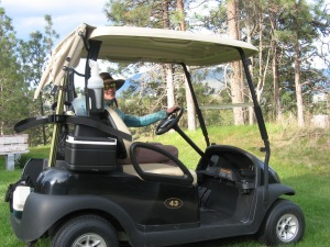 Traveling in style: checking nest boxes with a golf cart.