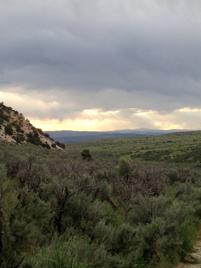 Typical views of pinyon pine and Utah juniper along the hillsides and sagebrush valleys