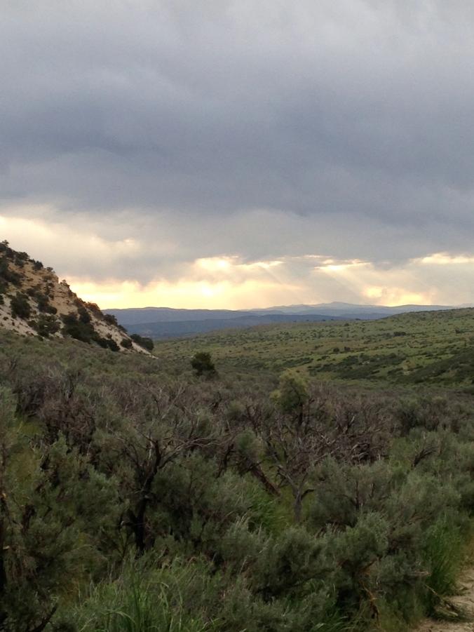 Typical views of pinyon pine and Utah juniper along the hillsides and sagebrush valleys