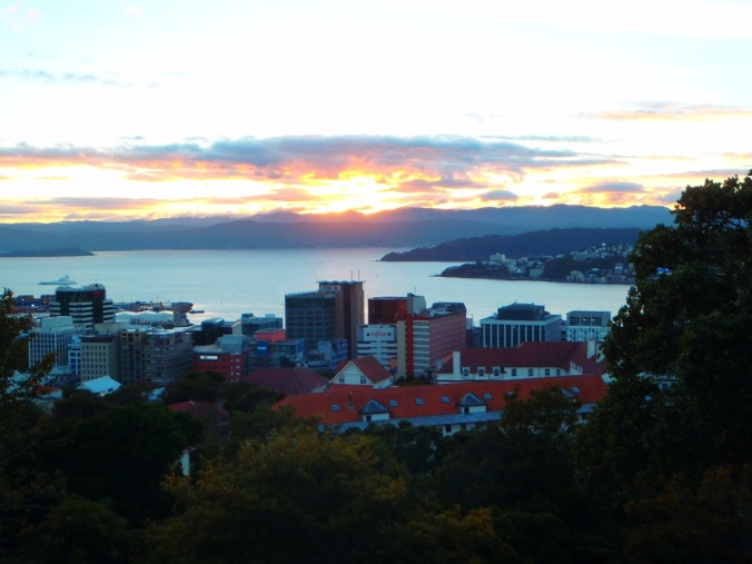 Sunrise view from the Wellington Botanic Gardens