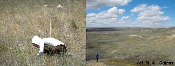Saskatchewan: land of the living skies