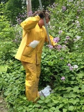 Me measuring Dame's Rocket in my 'homemade biohazard suit'.