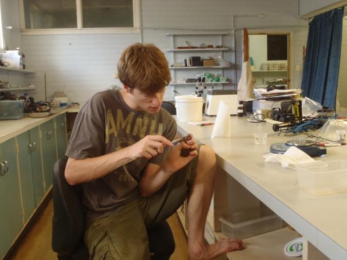 Cam measuring toads.