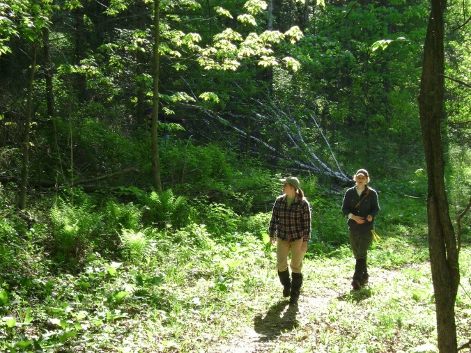 Walking through a wooded area, amber, wearing plaid, followed by Auriel