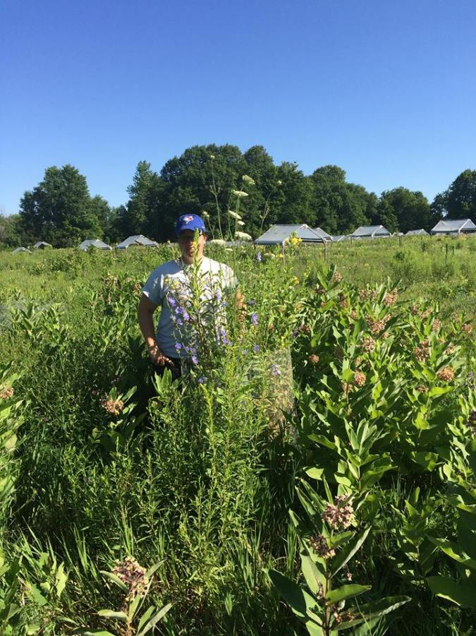 Standing by one of the plots I will count abundance in this summer