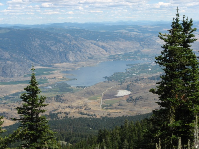 Well worth the trip: the Okanagan Valley from above.