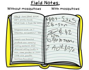 11.FieldNotes