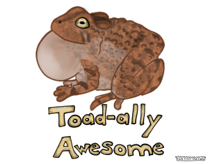 Photo of a toad that says toad-a-lly awesome
