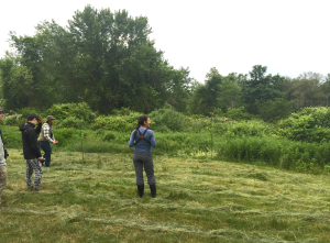 Amy and her field assistants raise a net and plot their strategy for capturing their next song sparrow.