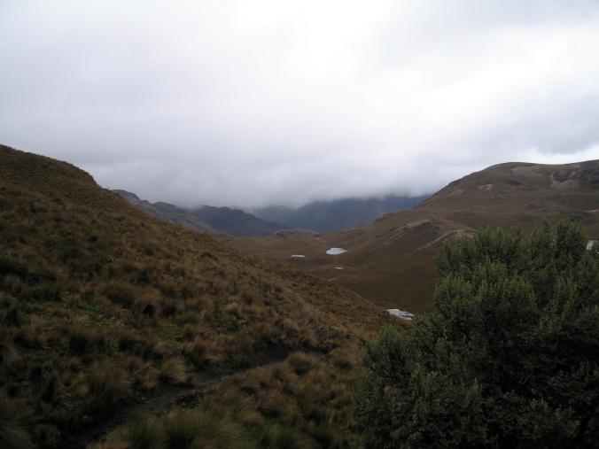 El Cajas landscape