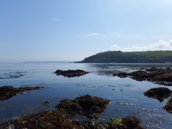 Views from sampling at Gyllyngvase beach, Falmouth