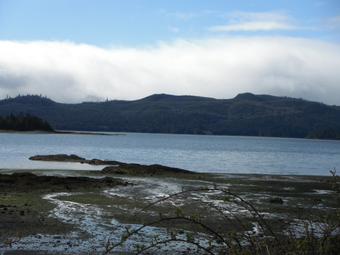 Intertidal zone, water, mountains in the background
