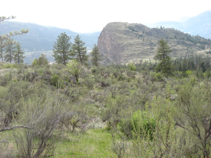 Isolated ranch field site in the Okanagan