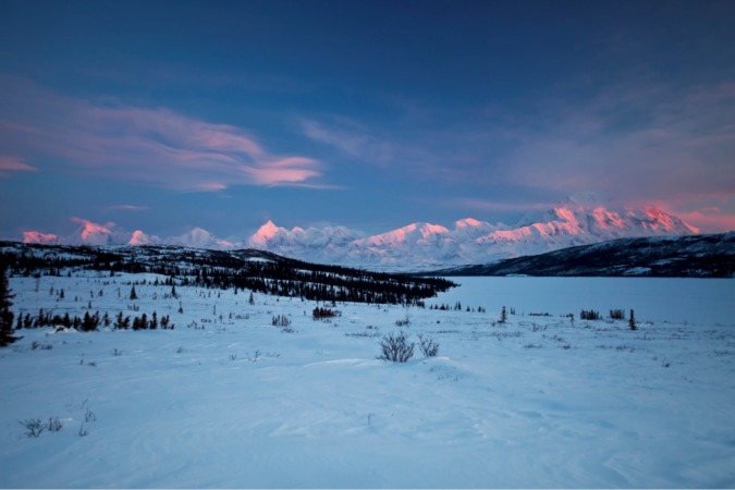 landscape of Denali National Park