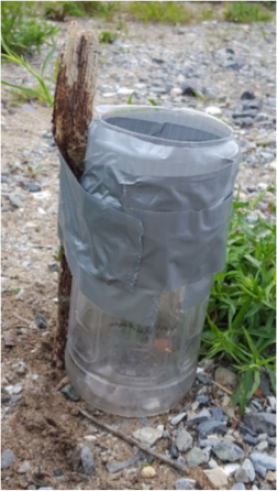 plastic bottle used for a rain gauge