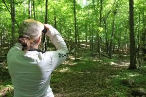 Sarah using binoculars to look for birds in the forest