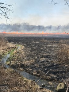 Prescribed burning on the prairie.