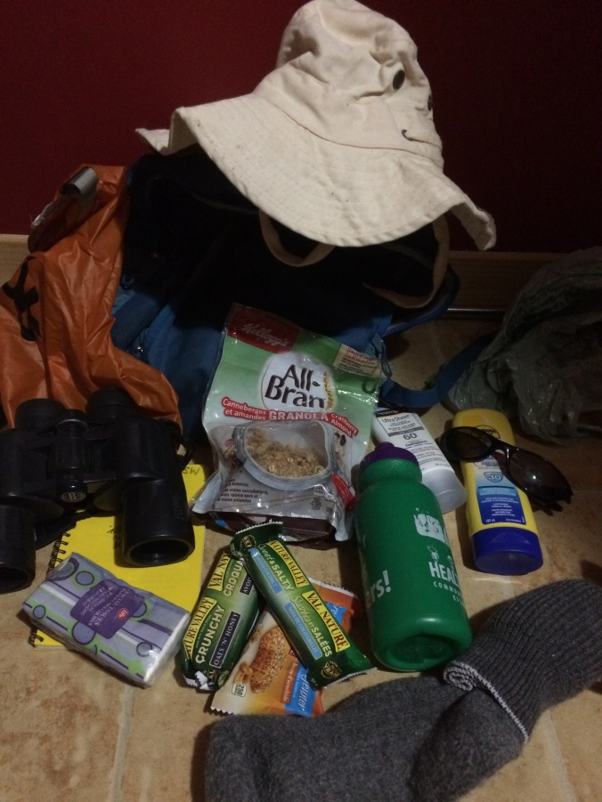 items in my field bag