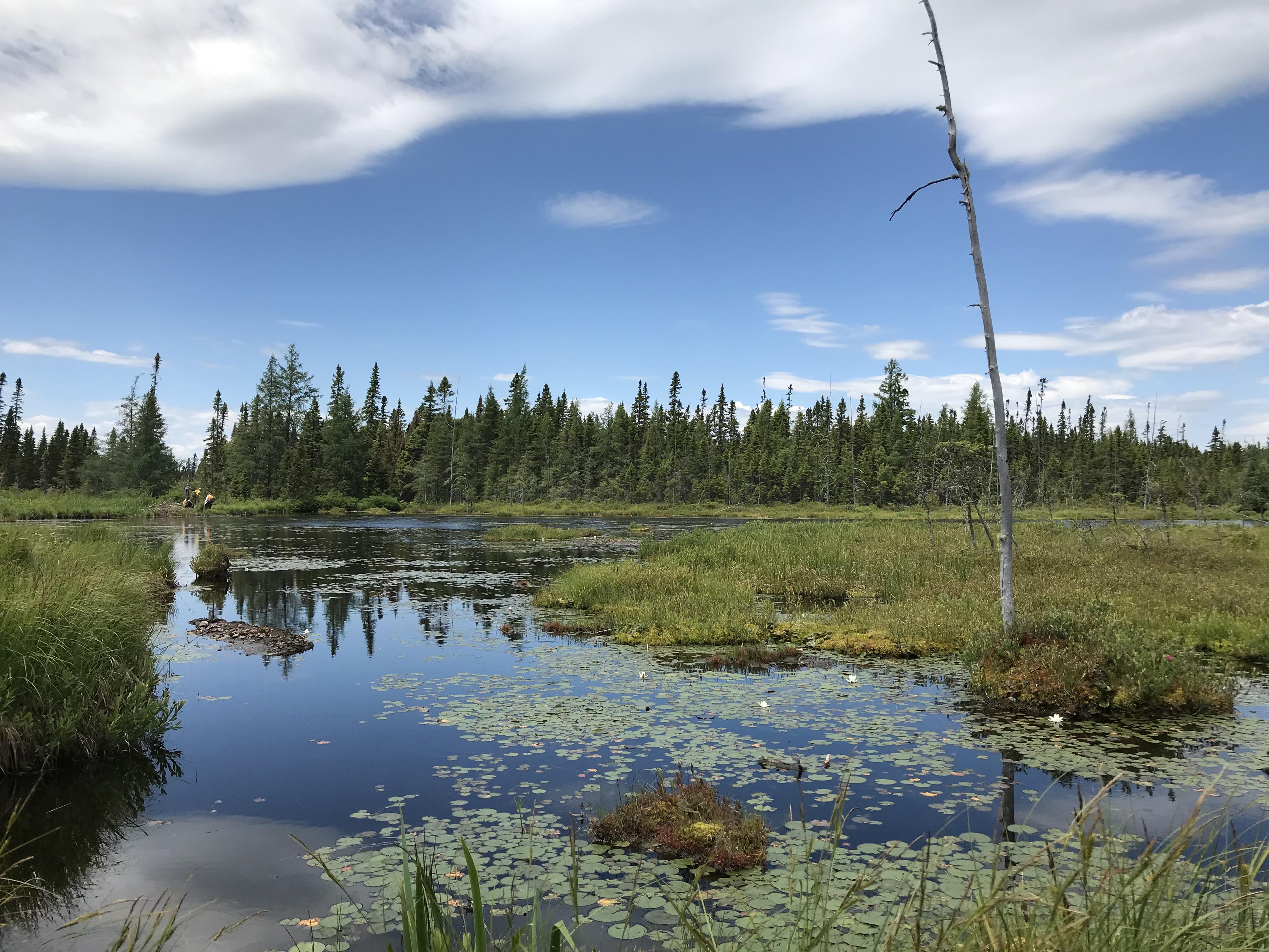 frair lake