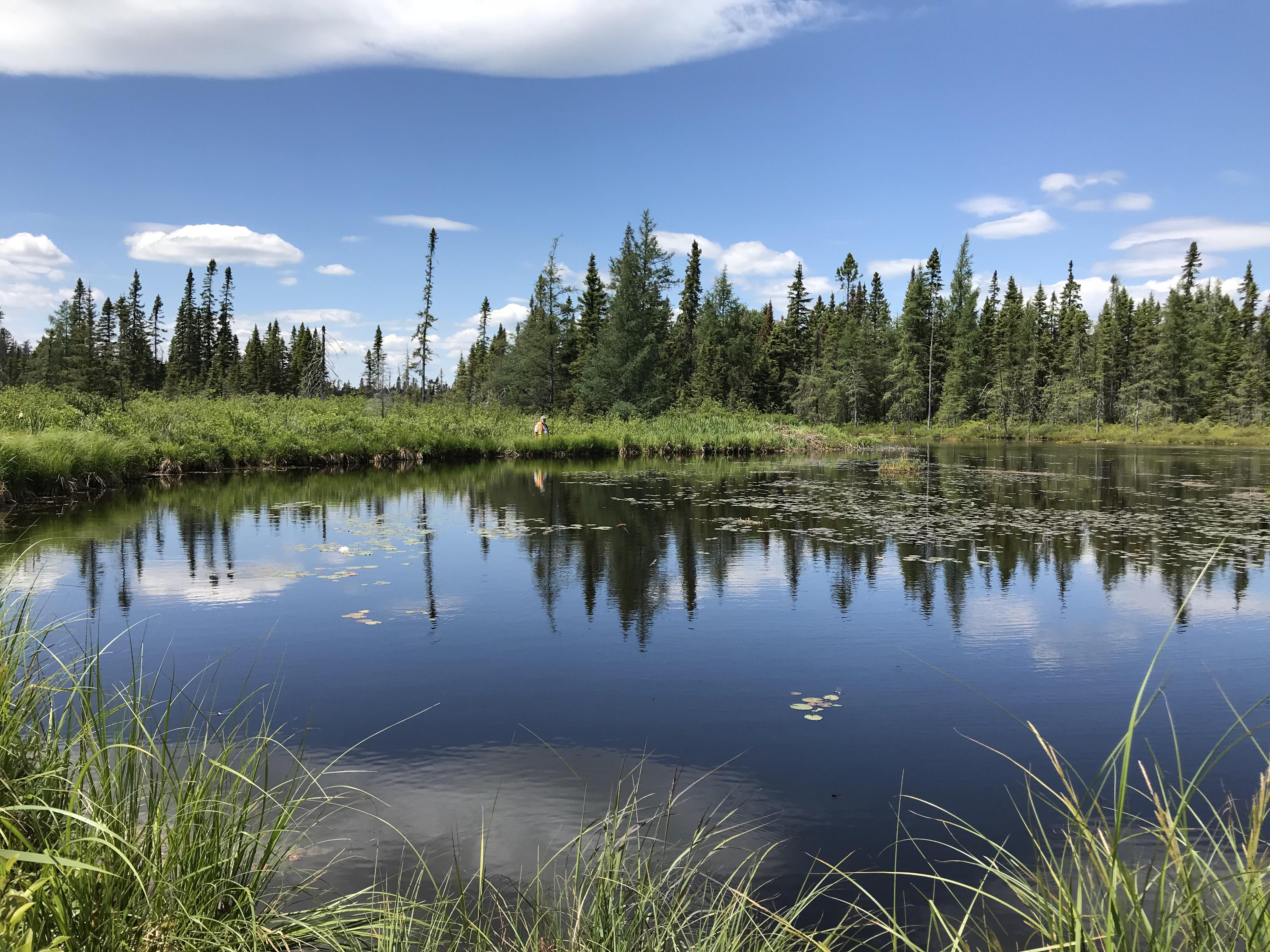 frair lake1