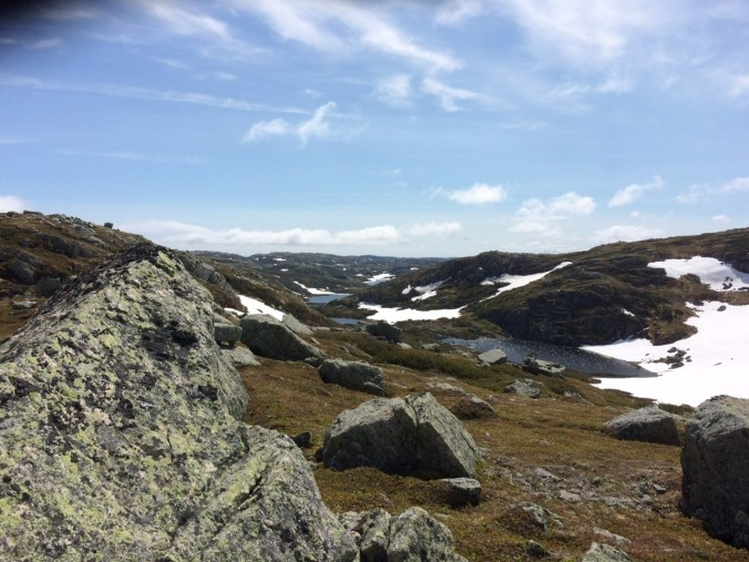 The wide blue skies and open spaces of the arctic-alpine habitat on top of Big Level.